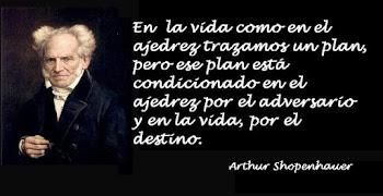 Reflexión de Arthur Schopenhauer