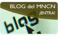 El blog del Museo