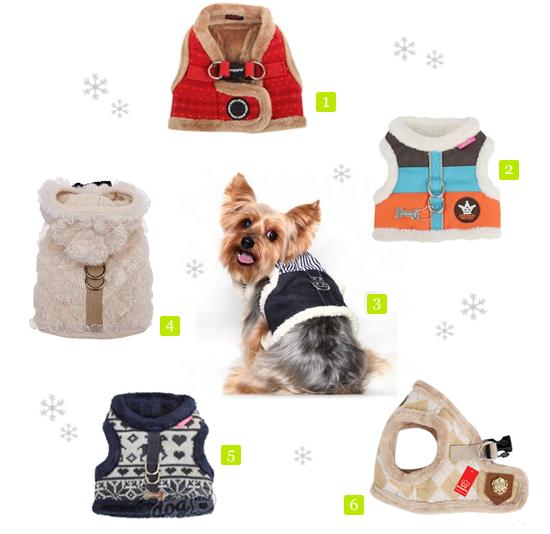 Les harnais d 39 hiver pour chiens woof mag 39 le blog des chiens heureux - Fabriquer un harnais pour chien ...