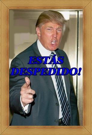Donald Trump estás despedido