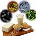 makanan probiotik