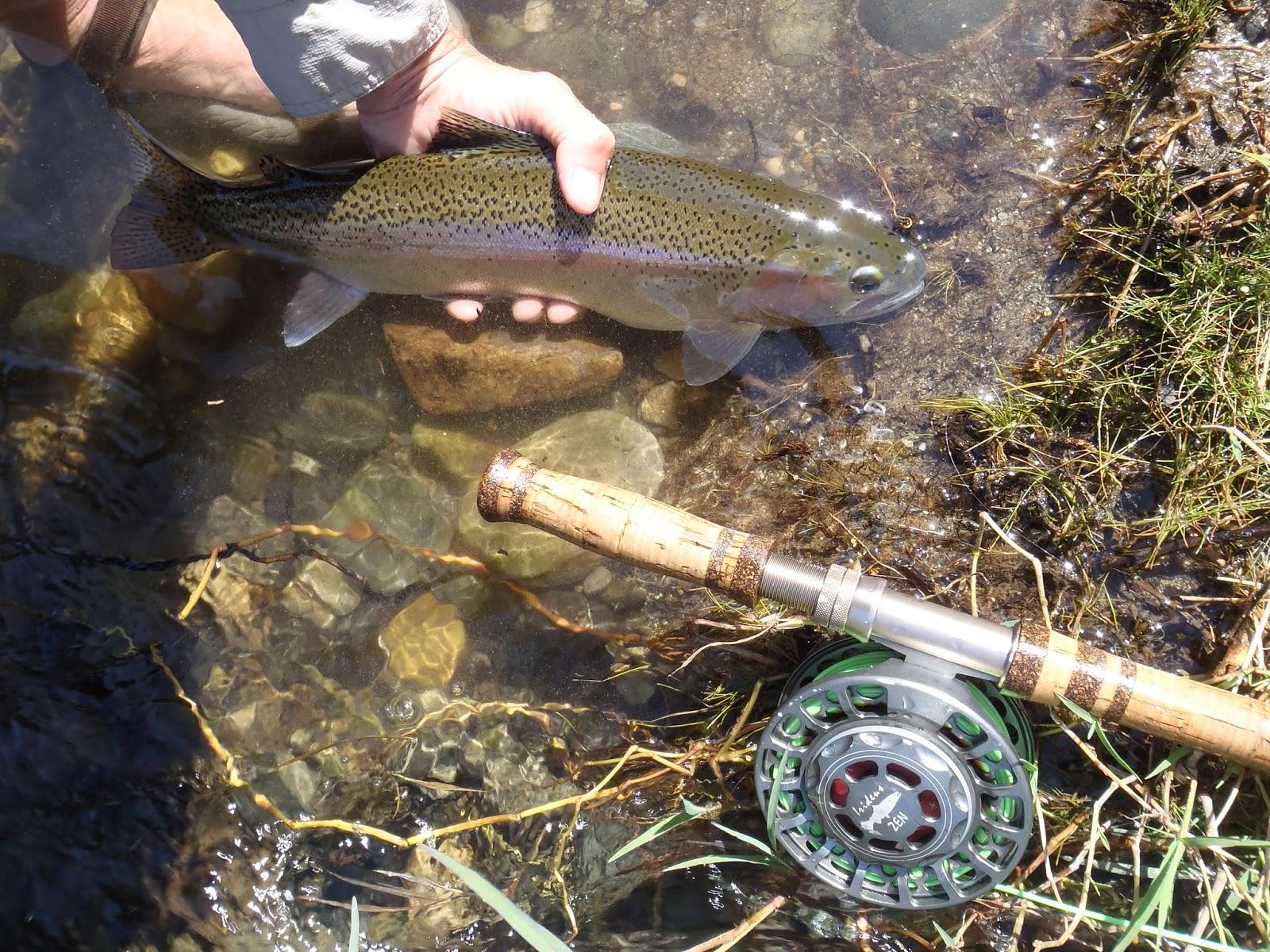 Irideus fly fishing products california steelhead season for Steelhead fishing gear