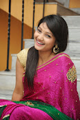 Priyanka Gorgeous Photos in Saree-thumbnail-1