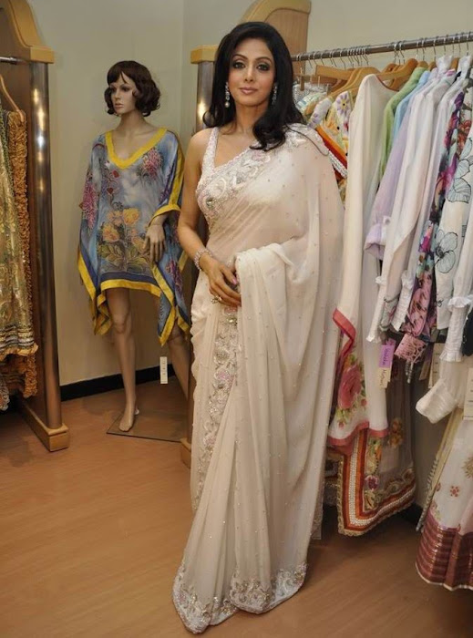 sridevi kapoor in transparent saree hot photoshoot