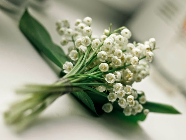 Pourquoi offre t on du muguet au 1er mai bettinael - Bouquet de muguet photo ...