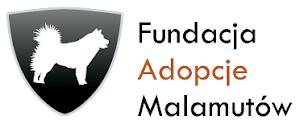 Strona Fundacji:
