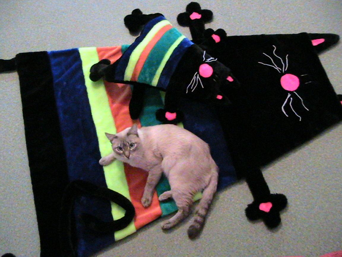 Коврик кошки своими руками