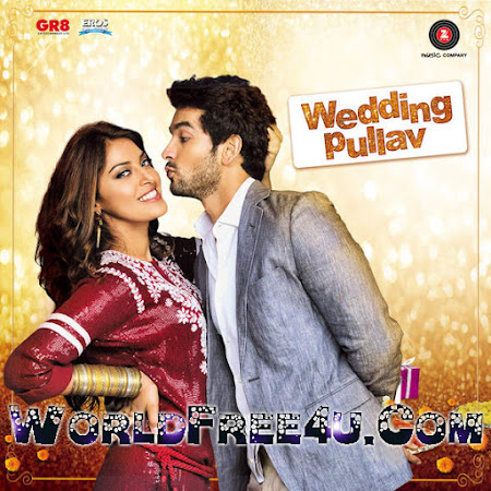 Poster Of Bollywood Movie Wedding Pullav 2015 Full Movie Free Download 300MB DVDRip 480P ESubs Watch Online