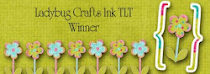Ladybug Crafts Ink Winner