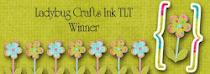 Ladybug Crafts Ink Winner