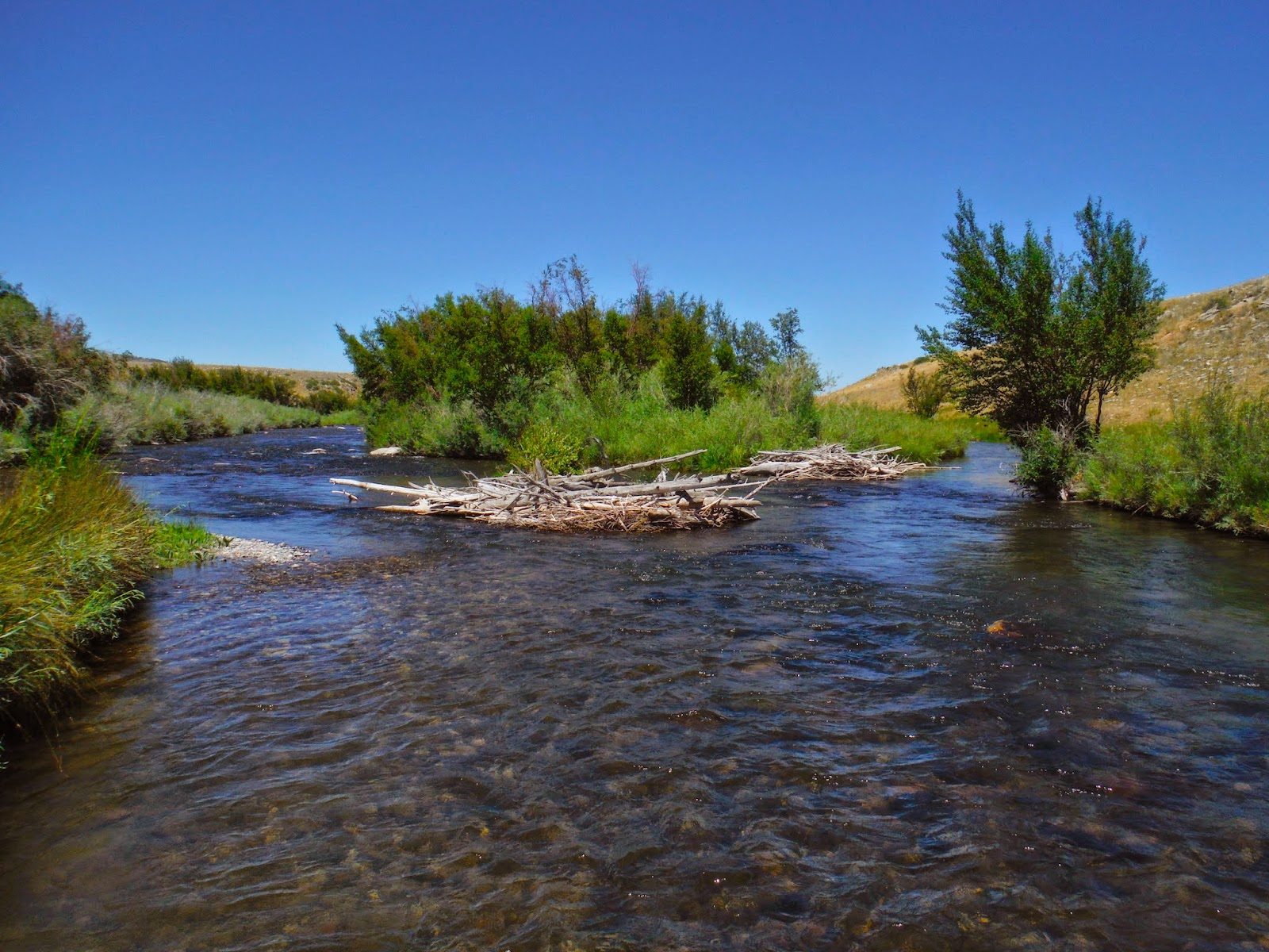 Erik s fly fishing blog anchors away on the madison river for Madison river fly fishing