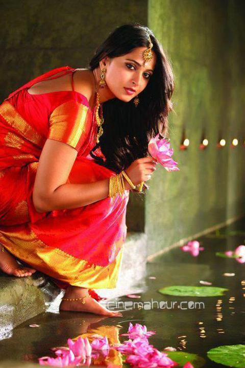 Anushka shetty 2012 saree wallpaper1 - Anushka shetty hot wallpapers in saree - 2012