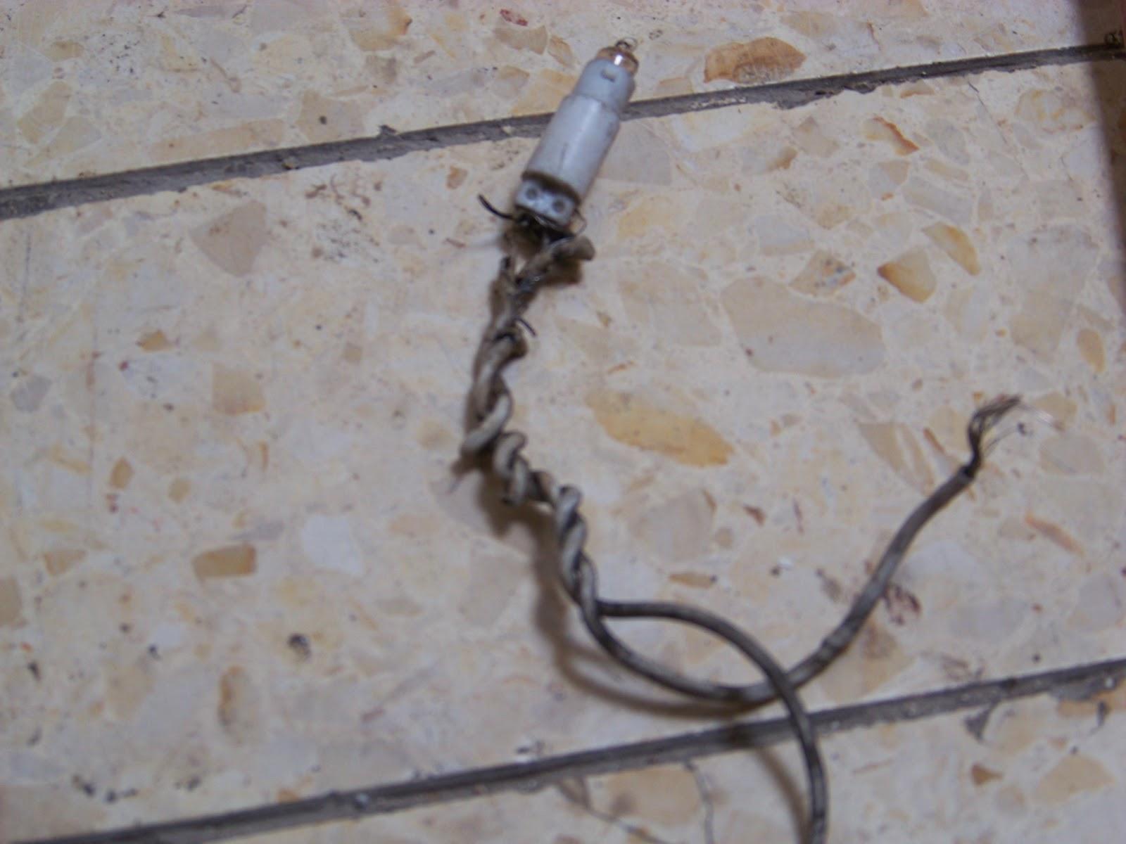 Frayed Extension Cord : Making aliyah january