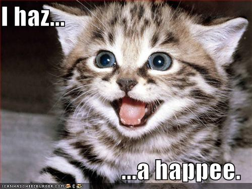 happy lolcat caption says I haz a happee