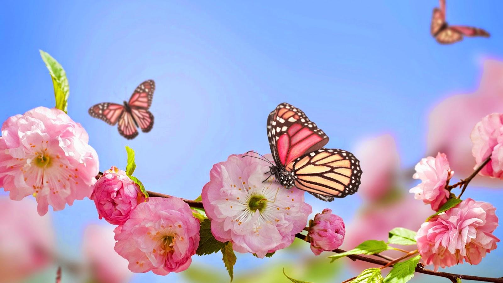 Mariposas y Flores Rosadas de Colores
