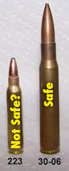 308 vs 223 Ammo Cost http://guitarwarp.blogspot.com/2013/01/deadly-223-versus-safe-30-06-cartridge.html