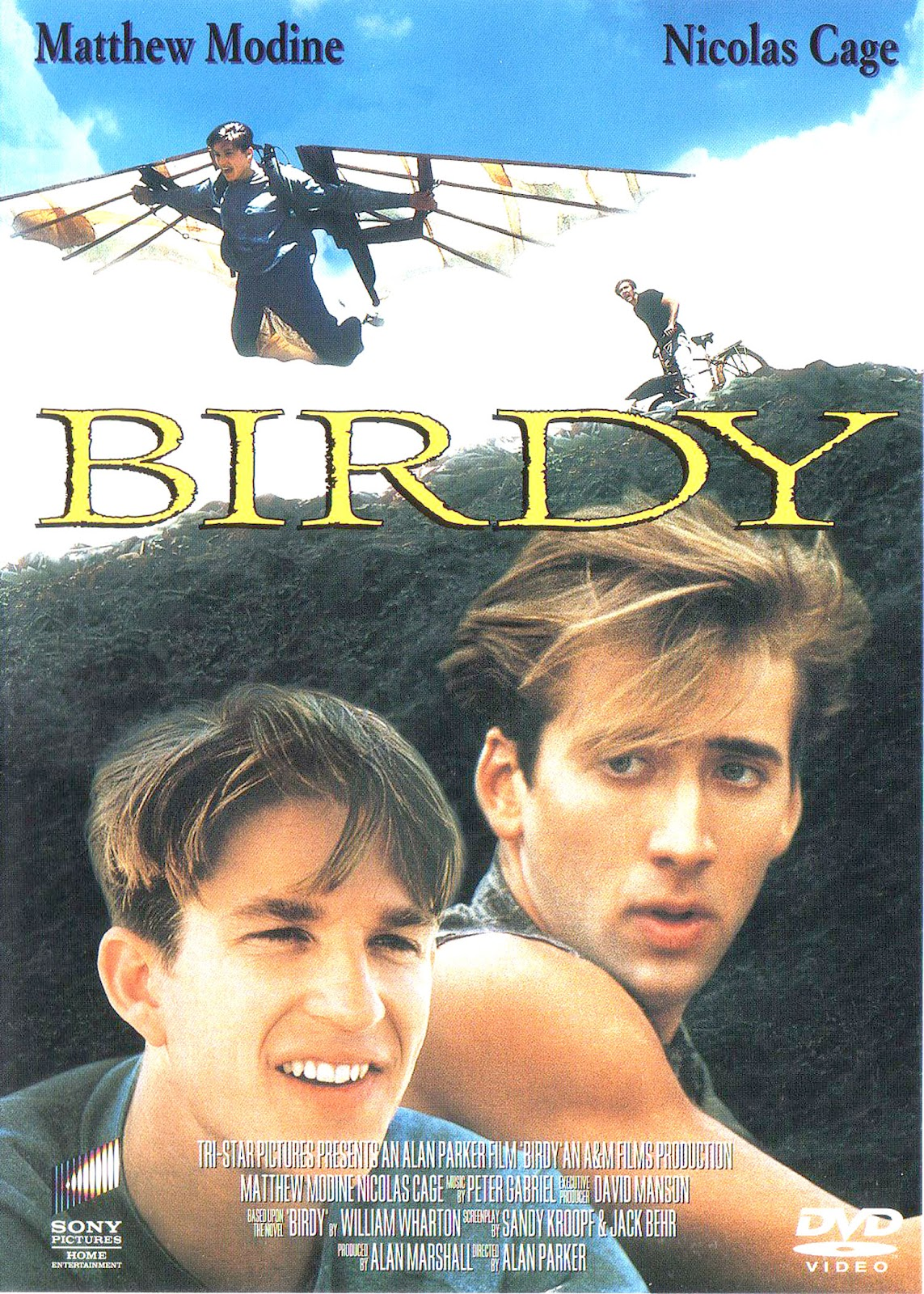 ჩიტუნა (ქართულად) Birdy / Птаха