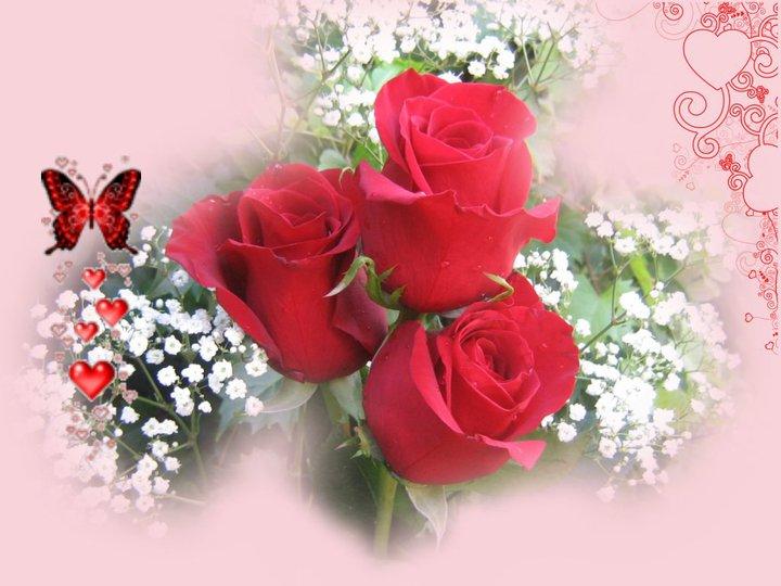 chaque jour un saint  - Page 2 Roses