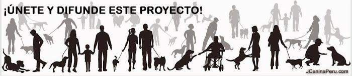 COMPARTE NUESTRAS ACTIVIDADES ASISTIDAS CON PERROS RESCATADOS