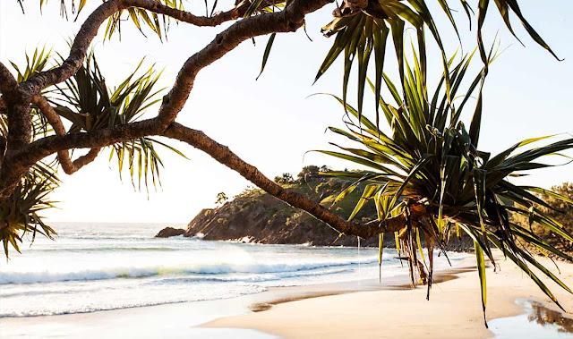 halcyon house,hotel,australie,byron bay,bleus,osier,déco,tropical chic