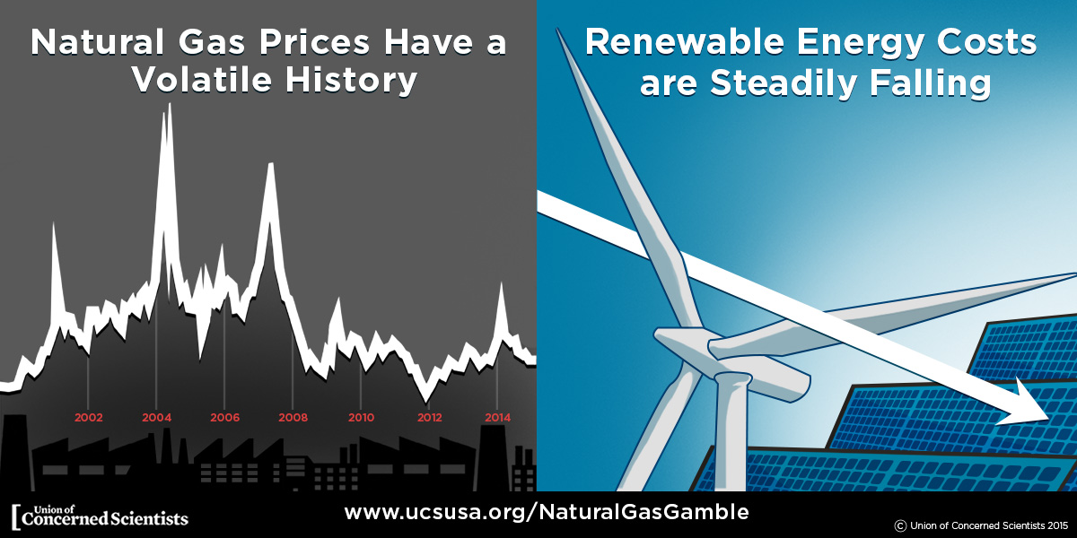 petroleum vs renewable energy alternatives The damage caused to the environment and populations due to the burning of fossil fuels is  alternative energy is  energy crisis: nuclear vs renewable .