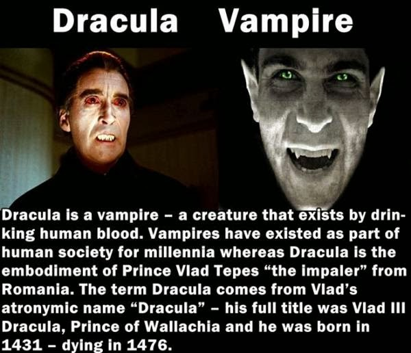 Differences between Dracula and Vampire