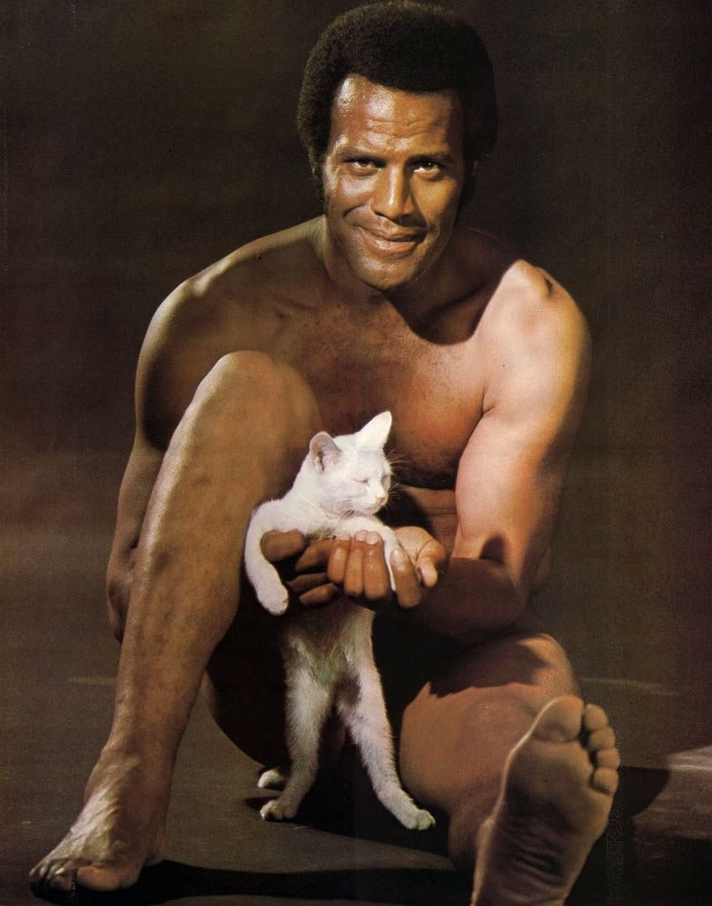 fred williamson hammer