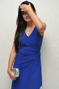 Nikitha Narayan glam pics in blue-thumbnail-3