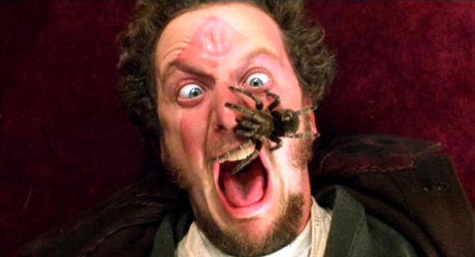 Daniel Stern, The Wonder Years