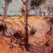 'Troncs a la llum del sol (Vincent Van Gogh)'