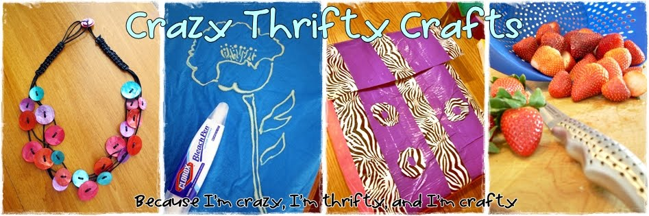 Crazy Thrifty Crafts