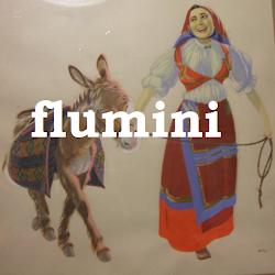 Flumini