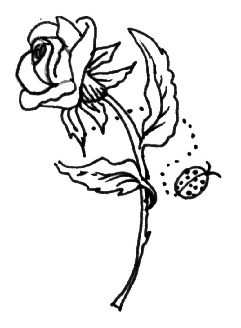 krafty kidz center roses coloring pages