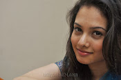 Natalie Rout Photos at Hang Up Audio launch-thumbnail-8