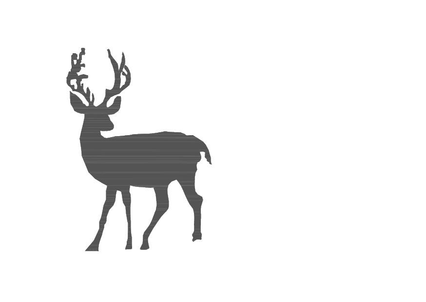 Lady Linda Black   Design  amp  DIY  Black deer