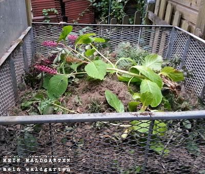 mein waldgarten kompost geheimnisse. Black Bedroom Furniture Sets. Home Design Ideas