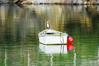 Barca en el muelle de Puerto de Vega