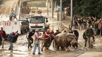 L'Ucraina è pronta a fornire assistenza a seguito di alluvioni in Georgia