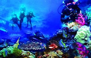 7 Laut Terindah Di Indonesia