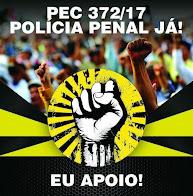 Desde 29/04/2012 publicitando informações relacionadas ao Sistema Prisional e Segurança Pública