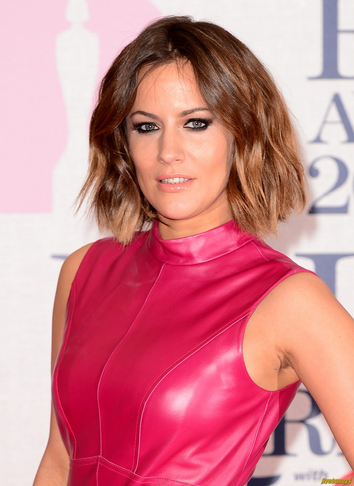 Apologise, but, Caroline flack sexy pics version has