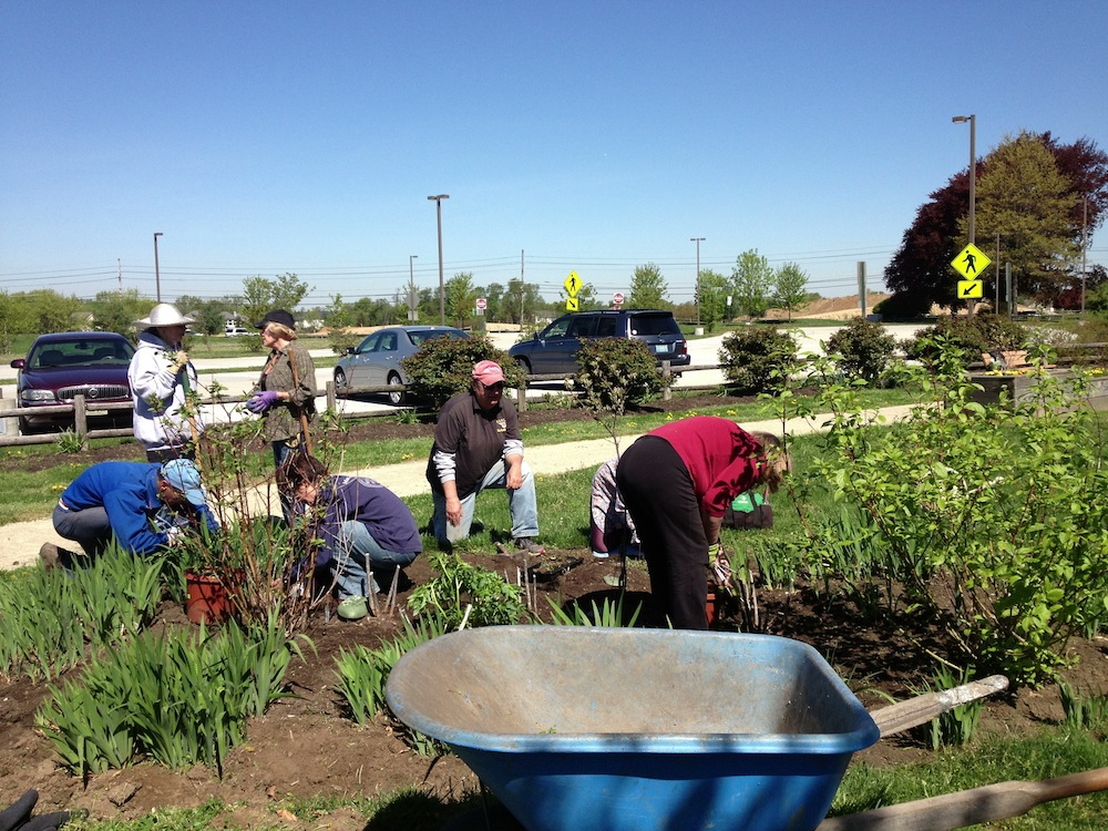 Rutgers master gardeners of burlington county ipm blog for The gardener burlington