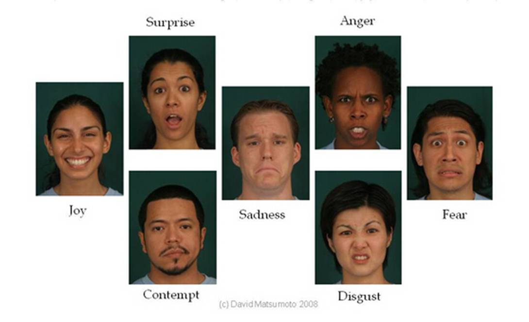 emotions as the universal language of the human race