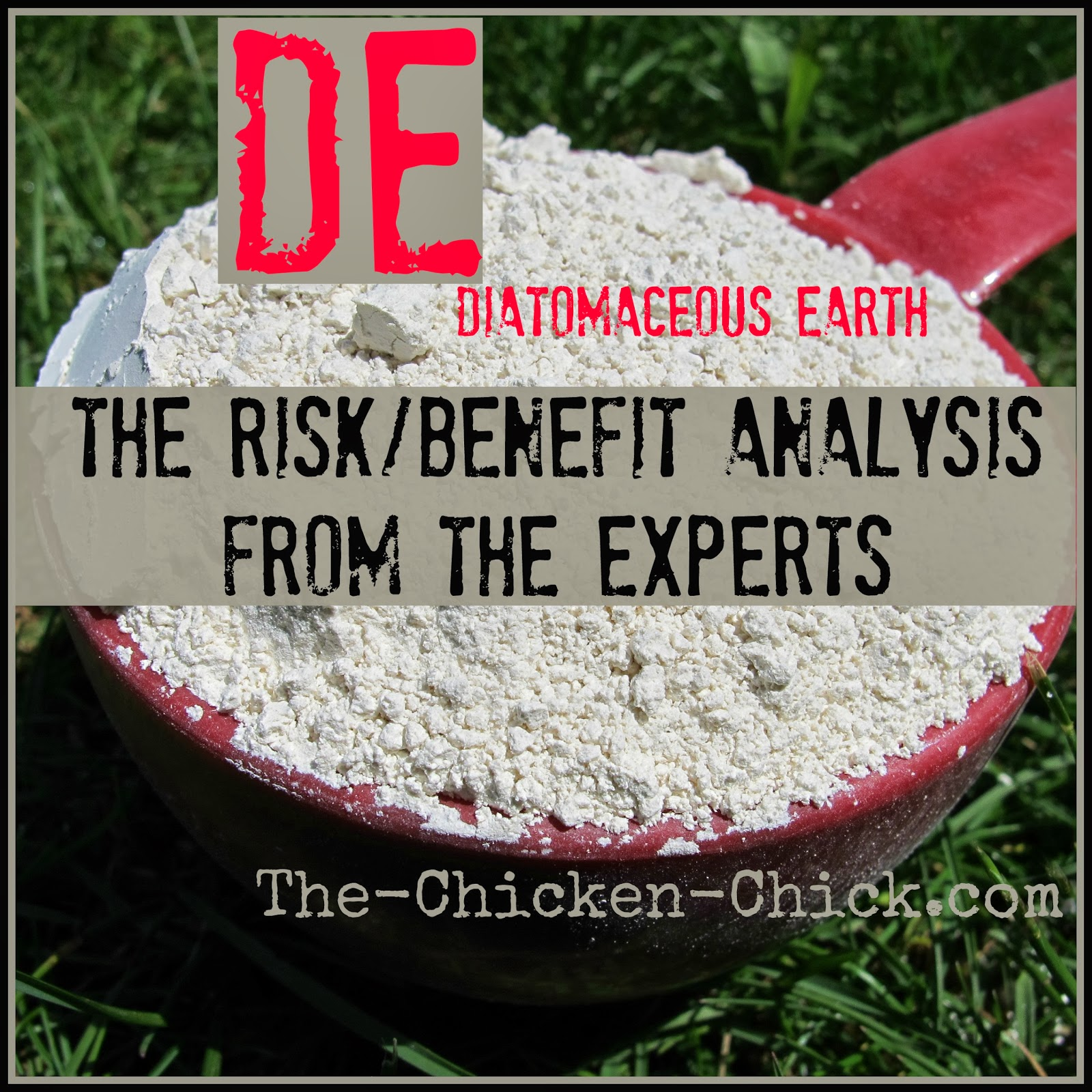 DE, Diatomaceous earth- the risks as discussed by two experts