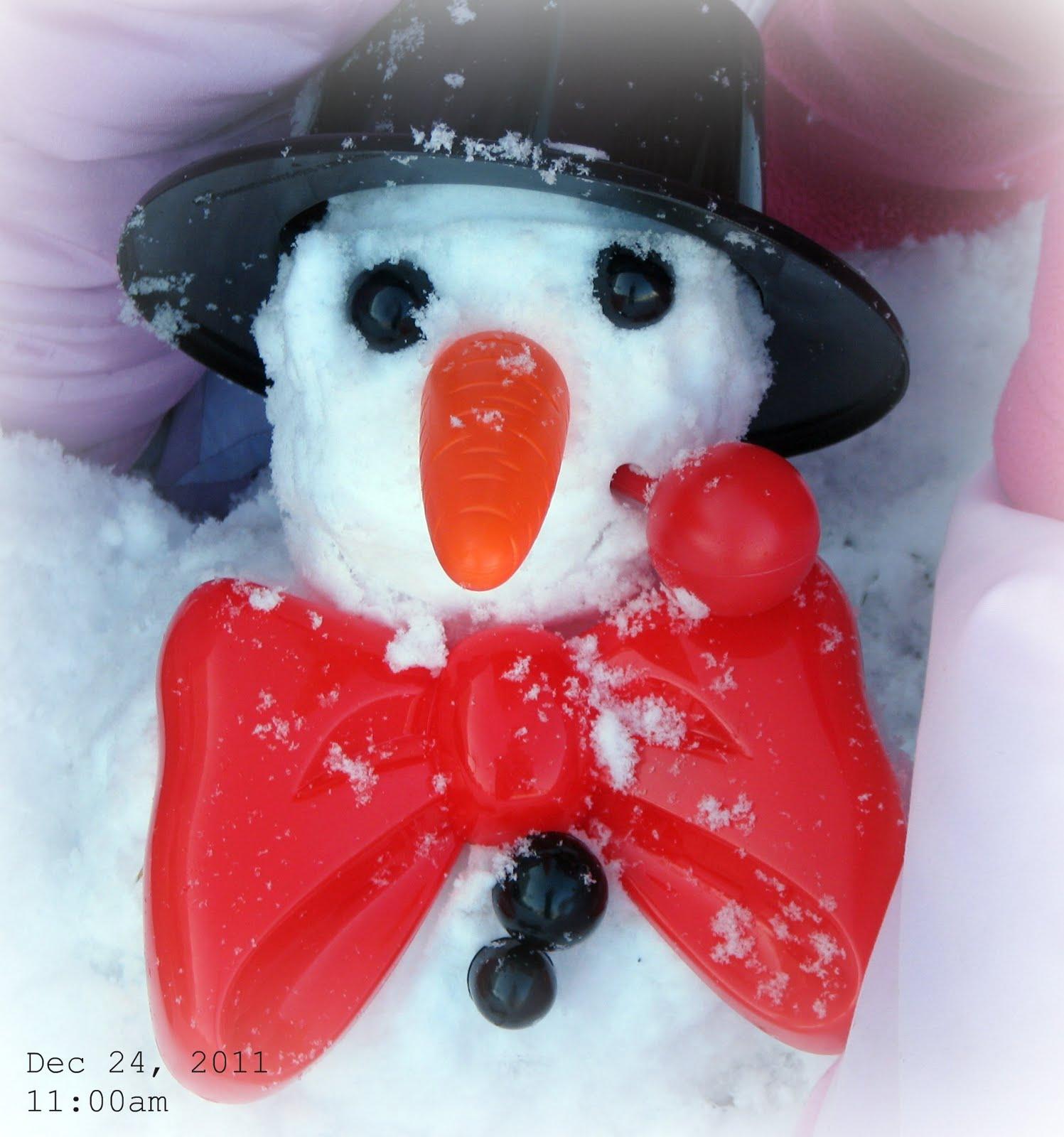 http://3.bp.blogspot.com/-2fFmtxEpKyw/TvX-n_gMM1I/AAAAAAAASMk/_AJUdMHm35U/s1600/snowman1.jpg