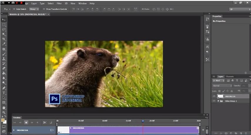 Photoshop Indonesia: Cara Membuat Watermark Di Video Pada