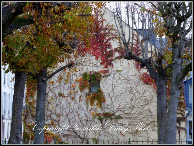 Autumn carrés Saint Louis Versailles