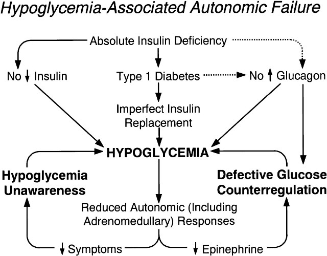 Hypoglycemia, Diabetes and Other Related Diseases