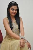 Pragathi photos at Basthi audio launch-thumbnail-8