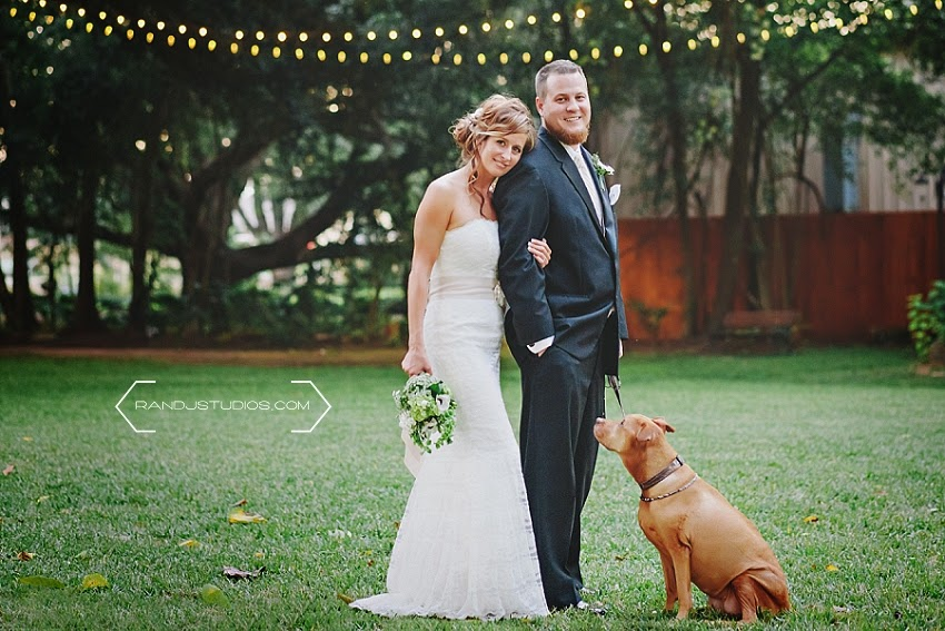 Flower Girl Dog, Wedding Formals